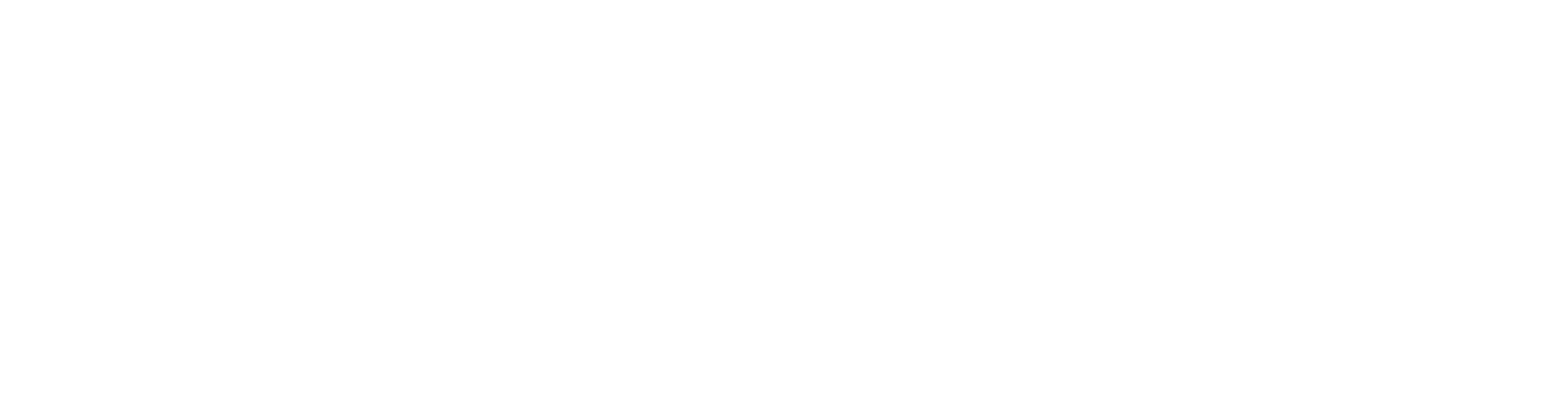 FS_Summit_FULL_WHITE
